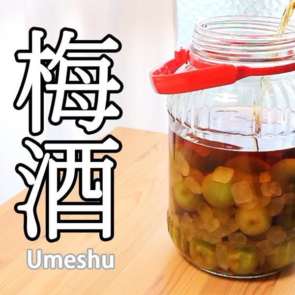【Yao Lam】太太の私房菜~自己釀梅酒