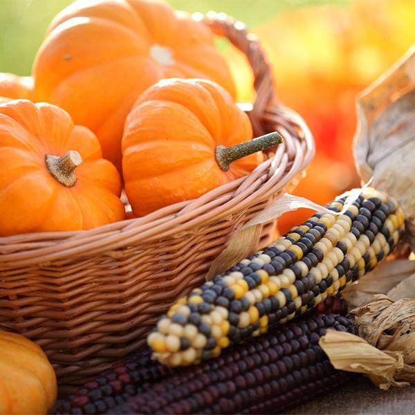 不吃飯也可以營養均衡?六大瘦身蔬菜取代精緻澱粉!